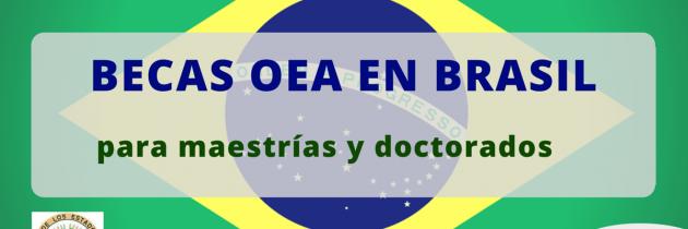 Beca Brasil OEA