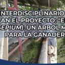 Proyecto Interdisciplinario TECNM Campus Tizimin